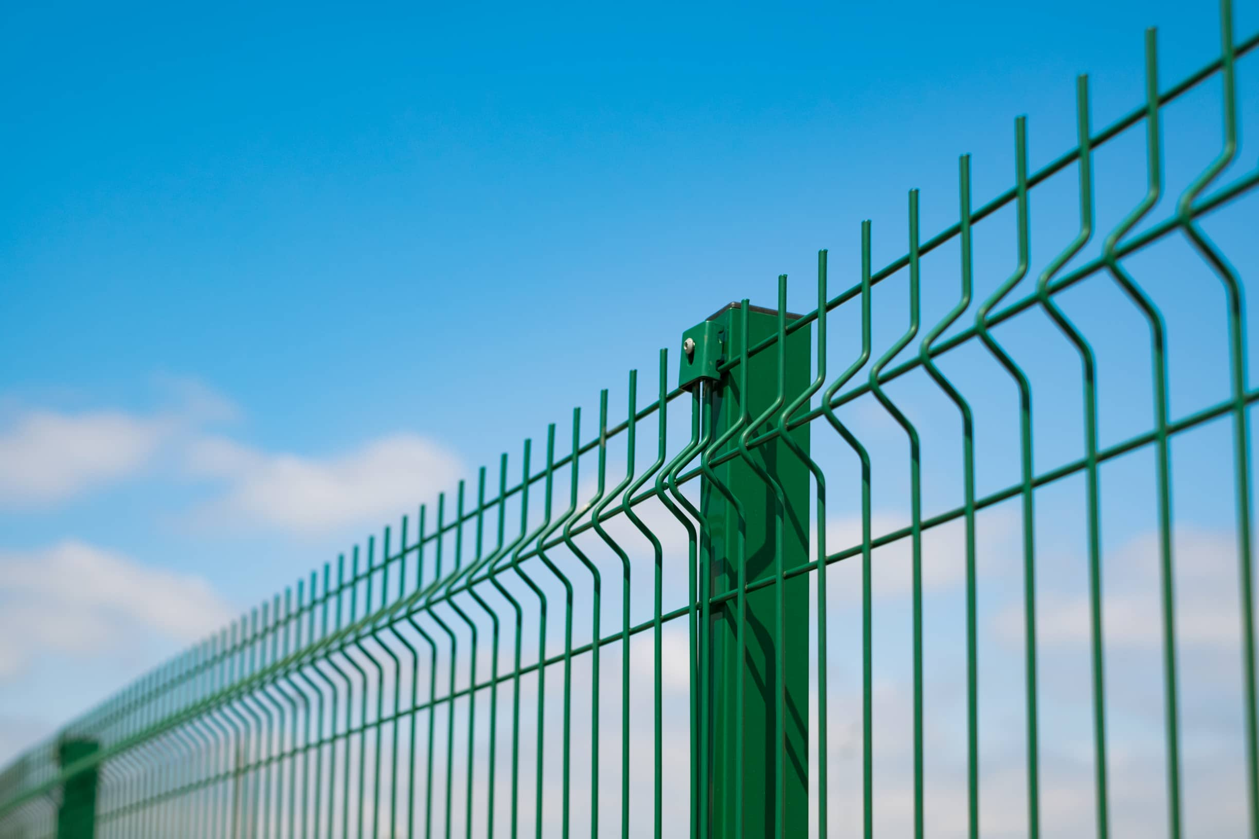 This image shows a green wire metal fence.